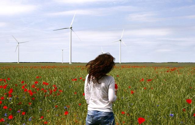 wind-turbines-836619_960_720